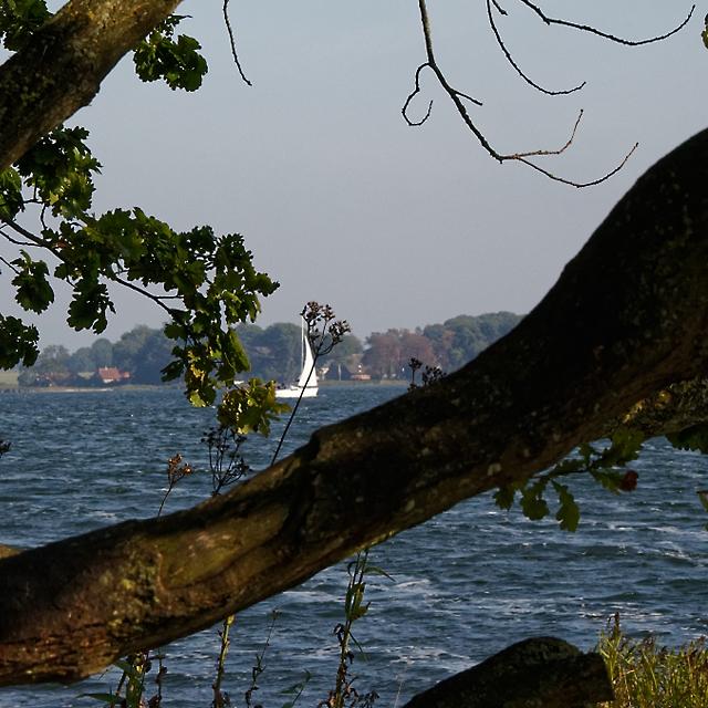 Schleiblick mit Segelboot